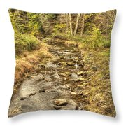 One Ends Another Begins Throw Pillow