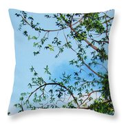One Fine Day In Cuba Throw Pillow