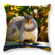 One Gray Squirrel Throw Pillow