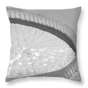 One Huge Lily Pad #3b Throw Pillow