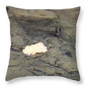 One Leaf Flowing Downstream Throw Pillow