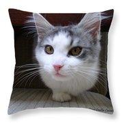 One Legged Kitty Throw Pillow
