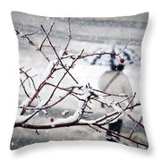 One Morning In Montreal Throw Pillow