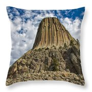 One Of A Kind Wonder Throw Pillow