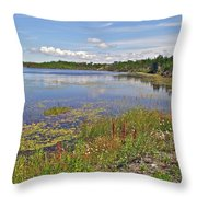 One Of Many Lakes In Newfoundland Throw Pillow