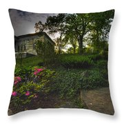 One Of Many Paths...v2 Throw Pillow