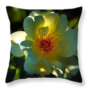 One Of The Last Throw Pillow