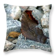 One Of The Twelve Throw Pillow