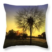 One Of Those Magical Mornings Throw Pillow