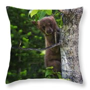 One Of Three Throw Pillow