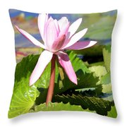 One Pink Water Lily Throw Pillow