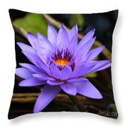 One Purple Water Lily Throw Pillow by Carol Groenen