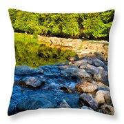 One River - Three Flows Throw Pillow