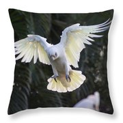 One Small Step For Bird Kind Throw Pillow