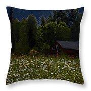 One Starry Summer Night Throw Pillow