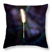 One Sunlit Candle Throw Pillow