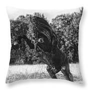 One Trick Pony Throw Pillow