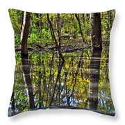 One Variable Throw Pillow