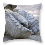 One Very Old Very Large Sulcata Tortoise Throw Pillow