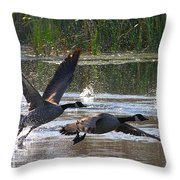 One Winged Flight Throw Pillow