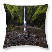 Oneonta Falls 2 Throw Pillow