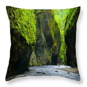 Oneonta River Gorge Throw Pillow by Inge Johnsson