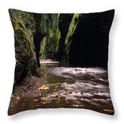 Onieata Gorge Throw Pillow