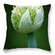 Onion Throw Pillow