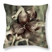 Onion Seed Heads Throw Pillow
