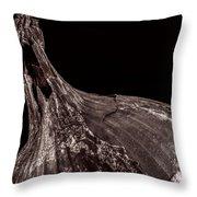 Onion Skin Throw Pillow by Bob Orsillo