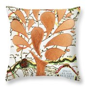 Only As Far As I Seek Can I Go Throw Pillow by Nikki Smith