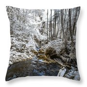 Onomea Stream In Infrared Throw Pillow