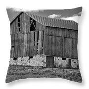 Ontario Barn Monochrome Throw Pillow