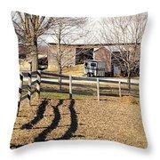 Ontario Farm Throw Pillow