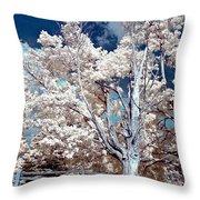 Ontario Summer Color Infrared Throw Pillow