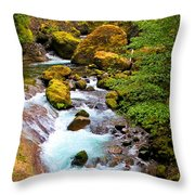 Opal Rivers Throw Pillow