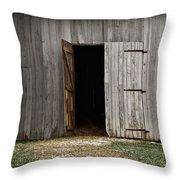 Open Doorways Throw Pillow