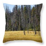 Open Meadow 2 Throw Pillow