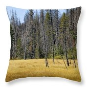 Open Meadow Glacier National Park Throw Pillow