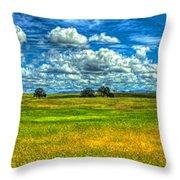 Open Pastures Throw Pillow