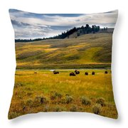 Open Range Throw Pillow