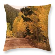 Open Road 4 Throw Pillow