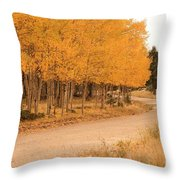 Open Road 5 Throw Pillow