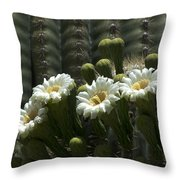 Open To The Sun Throw Pillow