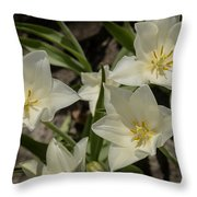Open Tulip Time Throw Pillow