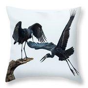 Openbill Storks Flying, Tarangire Throw Pillow