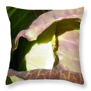 Opening Geometry Throw Pillow