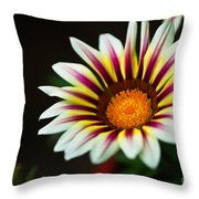 Opening Sensation Throw Pillow