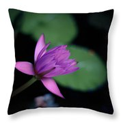 Opening Water Lily Throw Pillow