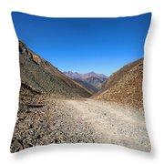 Ophir Loop Pass 1 Throw Pillow